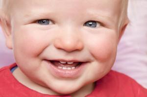 In der Regel brechen die Zähne in folgender Reihenfolge durch: 6 bis 8 Monate ? untere Scheidezähne 8 bis 12 Monate ? seitliche unteren und alle oberen Schneidezähne 12 bis 16 Monate ? erster Backenzahn 16 bis 20 Monate ? Eckzähne 20 bis 30 Monate ? zweiter Milchbackenzahn